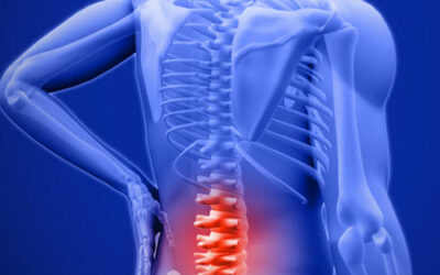 Your Work Station and Back Pain